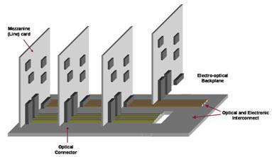 Selviah Figure 1.jpg